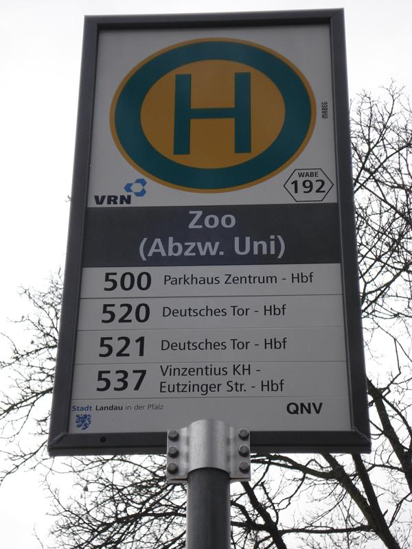 Seit dem 1. Januar verkehrt die Uni-Buslinie 537 zwischen Campus, Bahnhof und den Uni-Außenstellen. Foto: Rosa Stecher