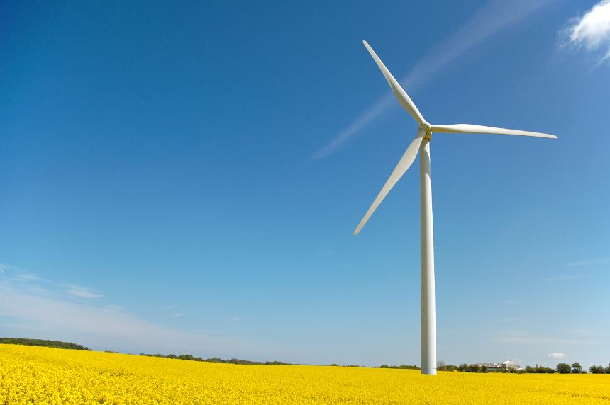 Für die Südpfalz ist Windkraft ein wichtiges Thema, weiß Dr. Jergentz. Foto: Petra Bork/pixelio.de