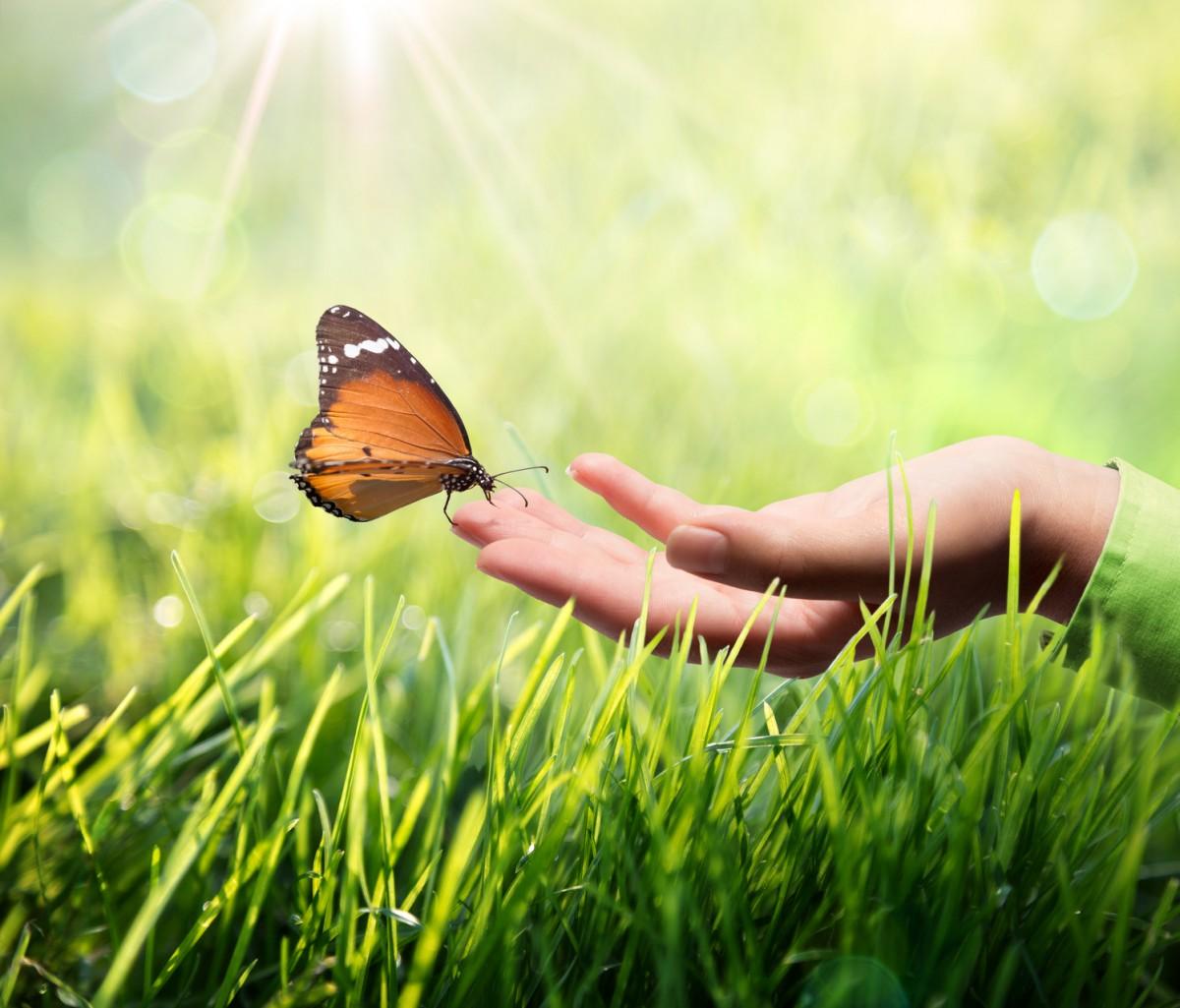 Der Tag zur Nachhaltigkeit am 18. Mai in Landau informiert über nachhaltige Lebensweisen. Foto: Fotolia/ RFsole