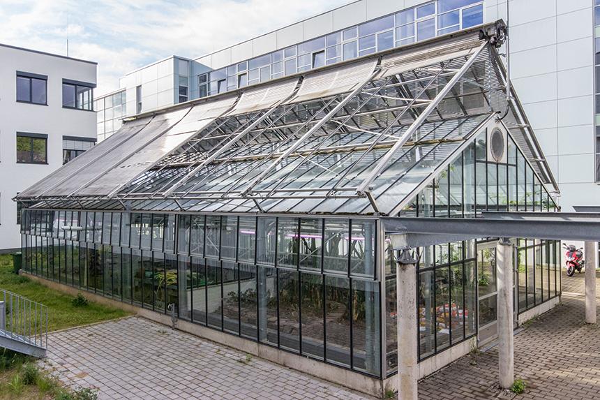 Das Gewächshaus am Campus Koblenz liegt zwischen den Gebäuden G und M. Foto: Adrian Müller