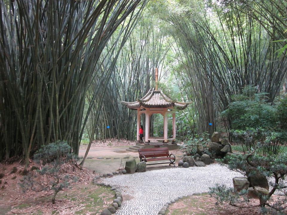 """Ein typisches Motiv in China: Eine Pagode hier im """"Forest Park"""" bei Fuzhou. Foto: Frör"""