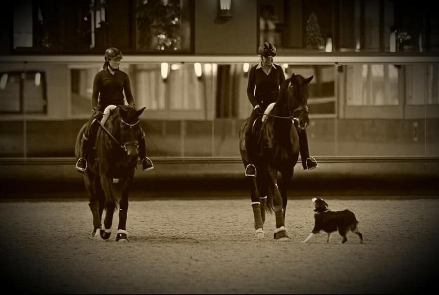 Alexa Menzel (links) arbeitet in den Semesterferien mehrere Wochen auf einem Hof und reitet Pferde ein. Seit ihrer Kindheit sitzt sie auf deren Rücken und hat dort ihre Leidenschaft gefunden. Foto: Privat