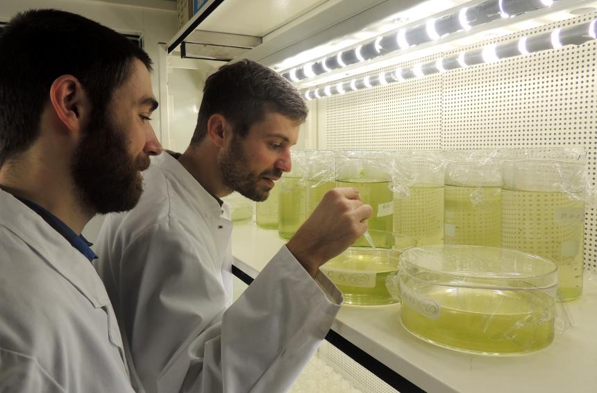Frank Seitz und Ricki Rosenfeldt haben mit der Analyse von Nanopartikeln den Schritt in die Selbstständigkeit gewagt. Fotos: Lisa Leyerer