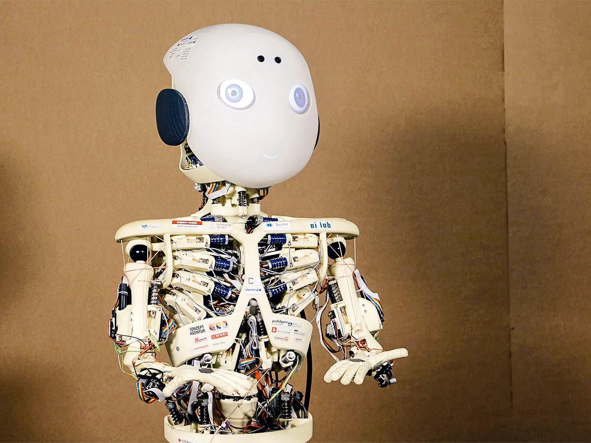 Der Forschungsroboter Roboy ist das Herzstück der Studie. Der Einsatz von Robotern zu psychologischen Forschungszwecken ist noch immer eine Besonderheit. Foto: Martina Mara
