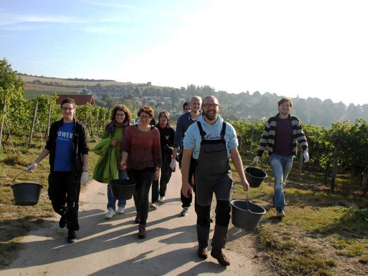 Danny Behrendt und seine Mitstreiter auf dem Weg zu ihrem Weinberg in Alzey-Weinheim. Bilder: Privat