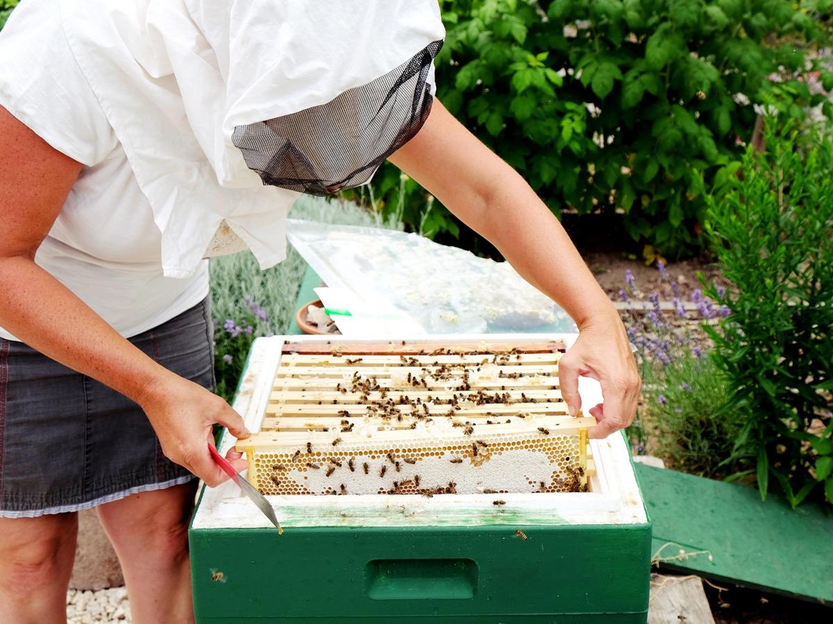 Die Hobby-Imkerin arbeitet ohne Handschuhe, sie möchte die Bienenzucht mit allen Sinnen erleben.
