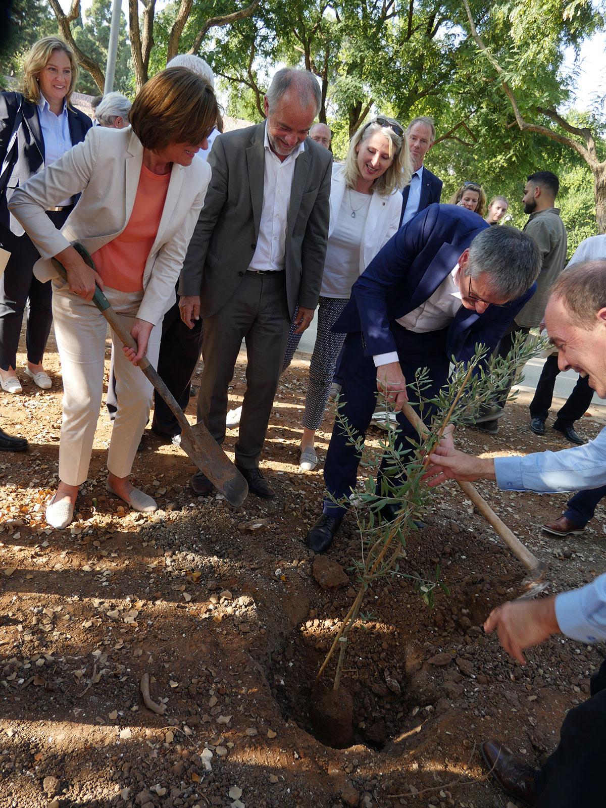 Pflanzung eines Partnerschaftsbaums bei Givat Haviva. Foto: Staatskanzlei RLP