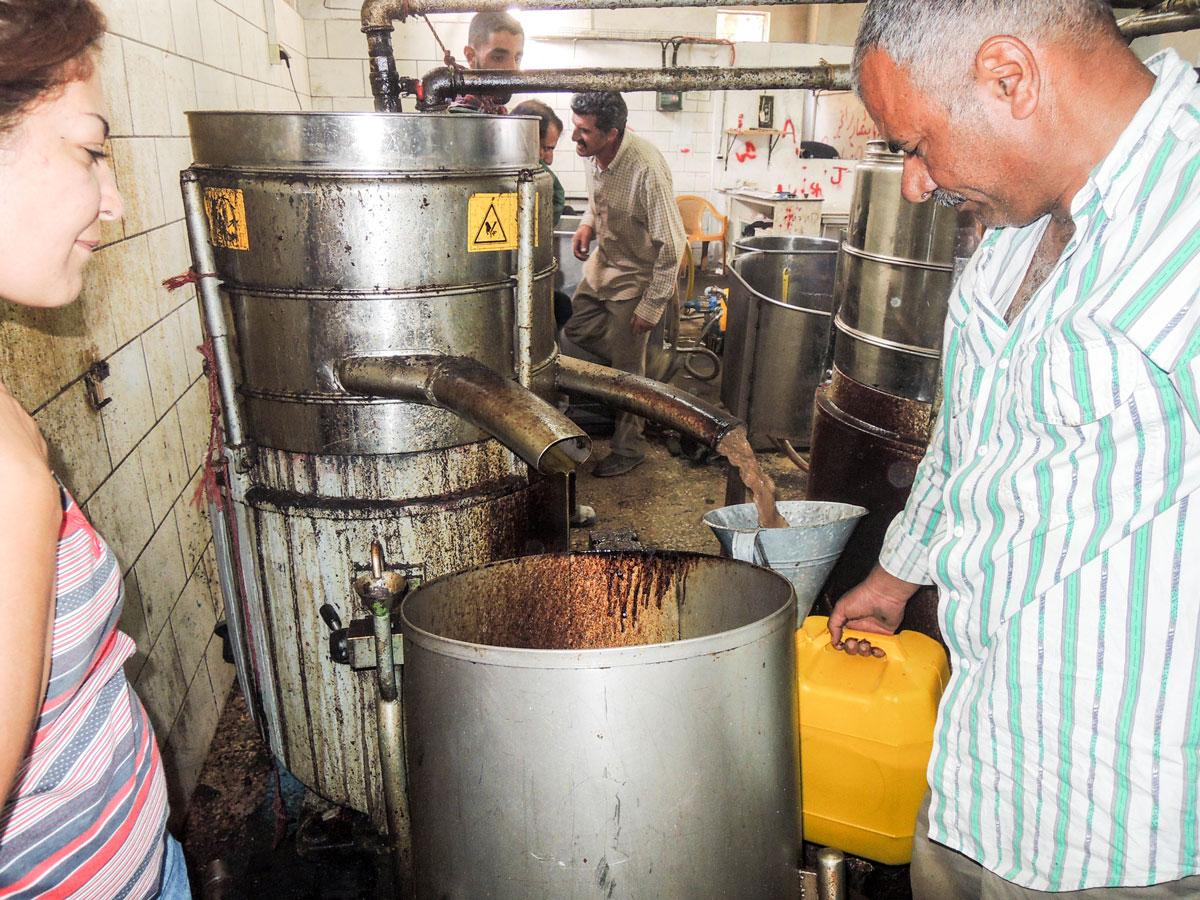 In einer Olivenmühle im Westjordanland: Links kommt in dünnem Strahl das Olivenöl heraus, rechts in dunklem, dickem Strahl das Olivenölabwasser. Foto: Markus Kurtz