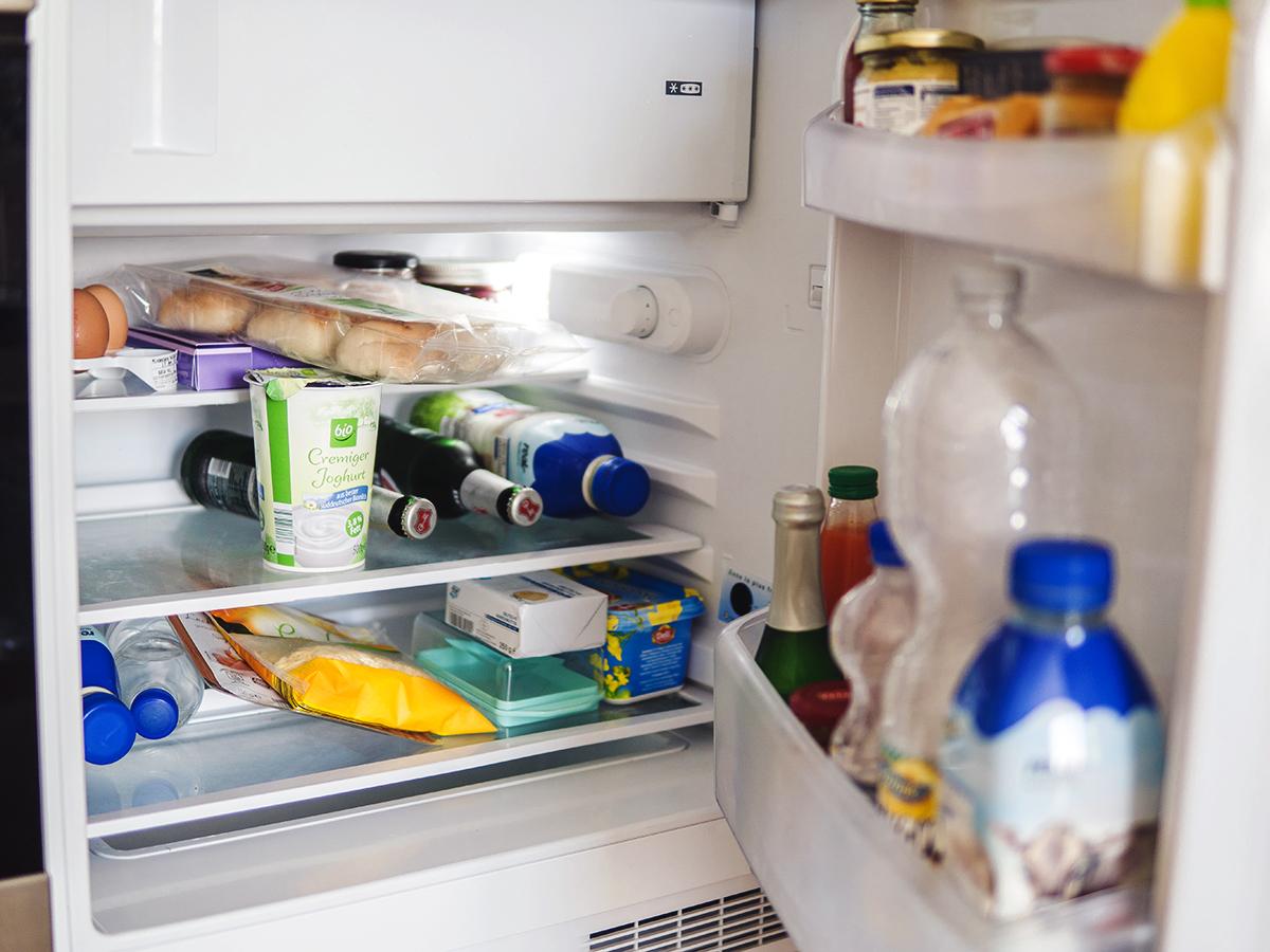 Plattenreich Kühlschrank