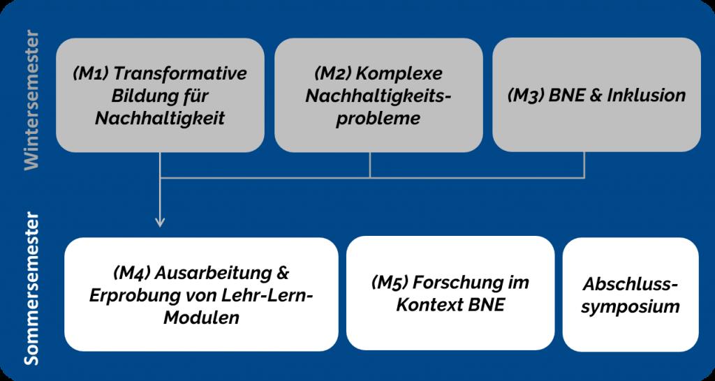 Modulübersicht des Zertifikats für BTN