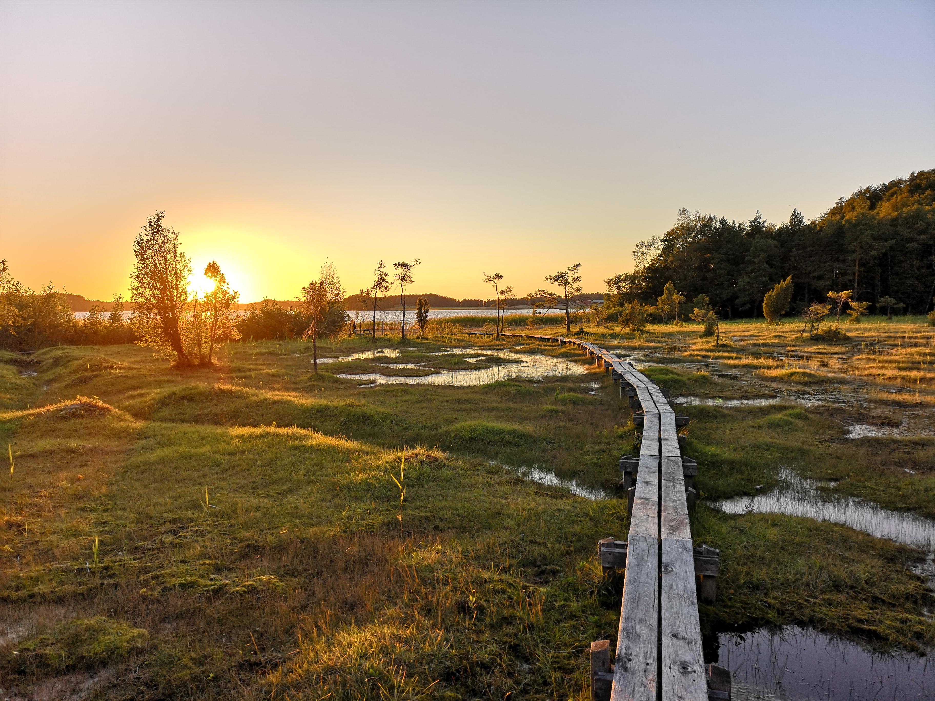 Schweden beeindruckt mit Wäldern, Sumpflandschaften und Seen. Foto: René Lang