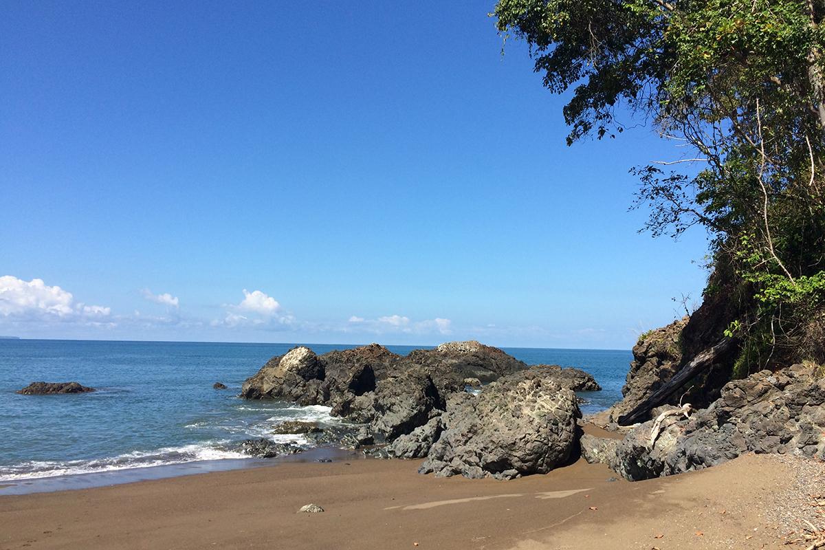 Ein Arbeitsplatz zum Träumen: Hier kommen Jahr für Jahr Meeresschildkröten zur Eiablage an den Strand. Foto: Lisbeth Wolf