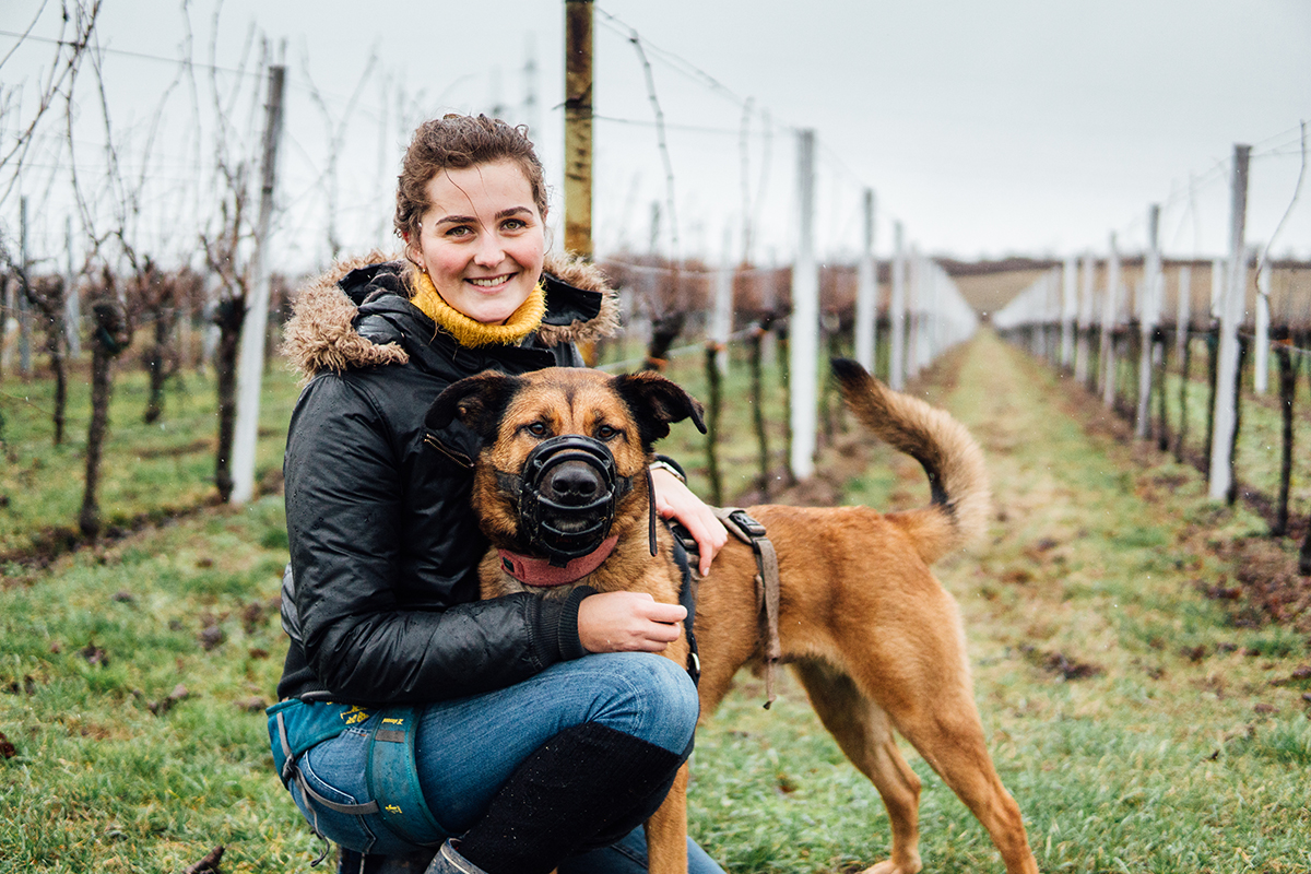 Hannah Arato studiert nicht nur Kunst und Biologie auf Lehramt, sondern betreut auch ehrenamtlich Hunde in einem Landauer Tierheim. Fotos: Philipp Sittinger