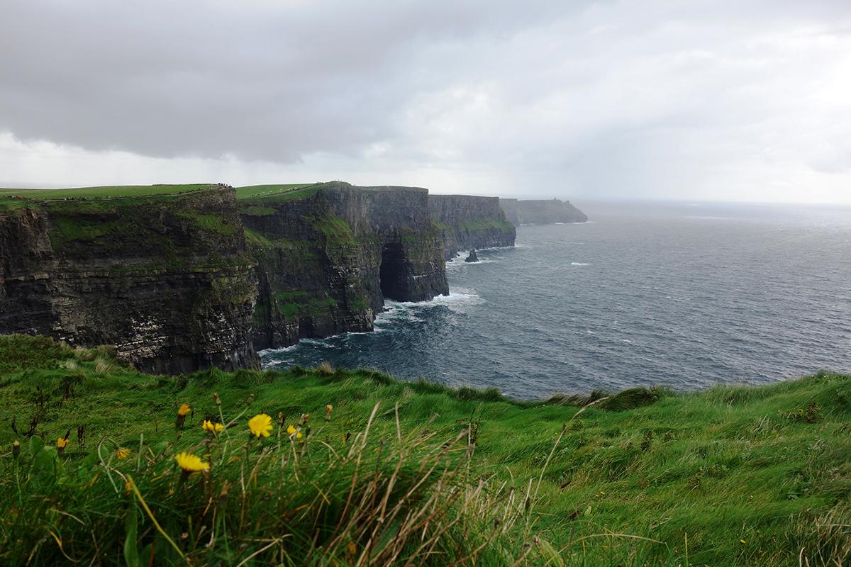 Die berühmten Cliffs of Moher bei typisch irischem Wetter. Foto: Laura Sistek