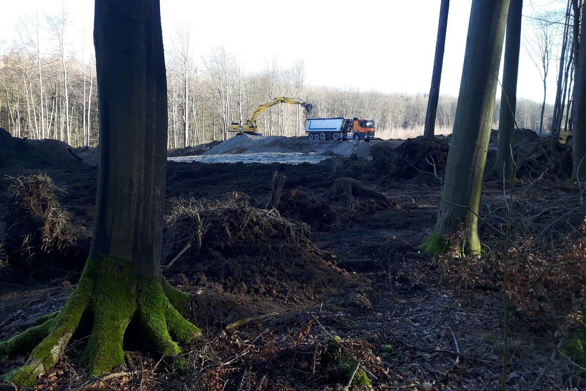 Bendorf liegt nördlich von Koblenz. In seinen Wäldern wir Bims abgebaut. Dr. Julian J. Zemke und sein Team untersuchen, welche Auswirkungen das auf den Wasserabfluss hat.a